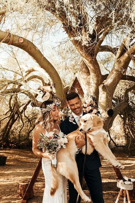 boho chic elopement wedding ideas with four legged friends