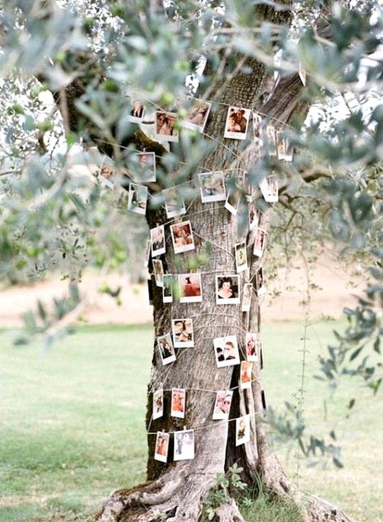 country wedding photo display ideas