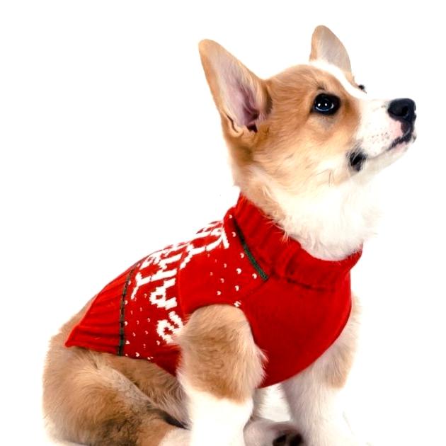 Purr Christmas Sweater