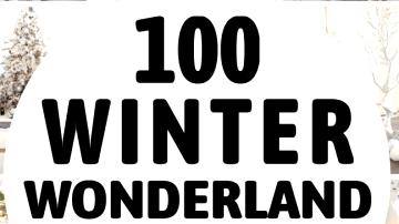 100 Winter Wonderland Dwelling Decorations